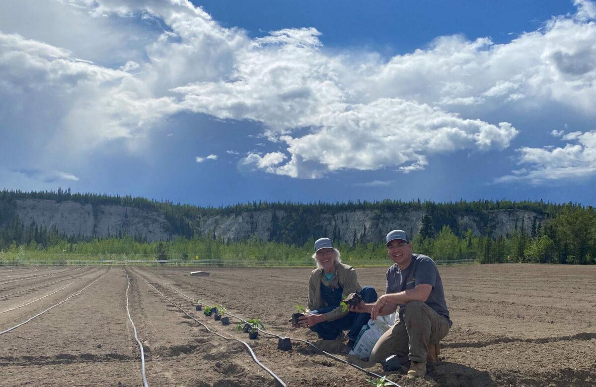 image of John and Brendan planting